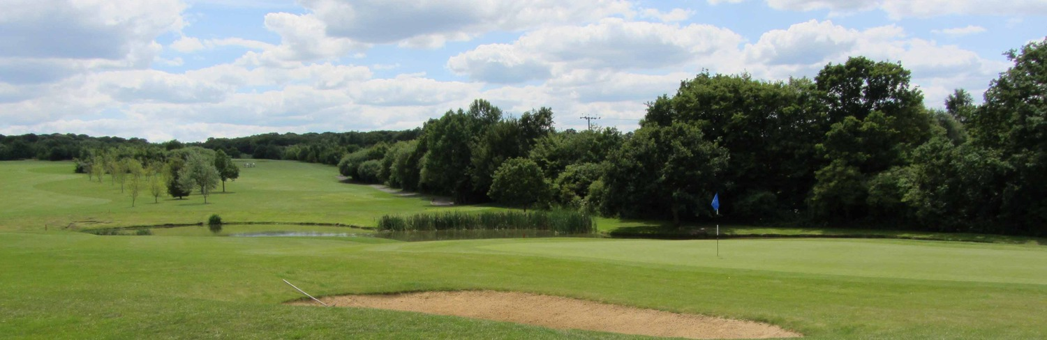 CRONDON PARK - SE Group Junior Foursomes - 24 August 2015